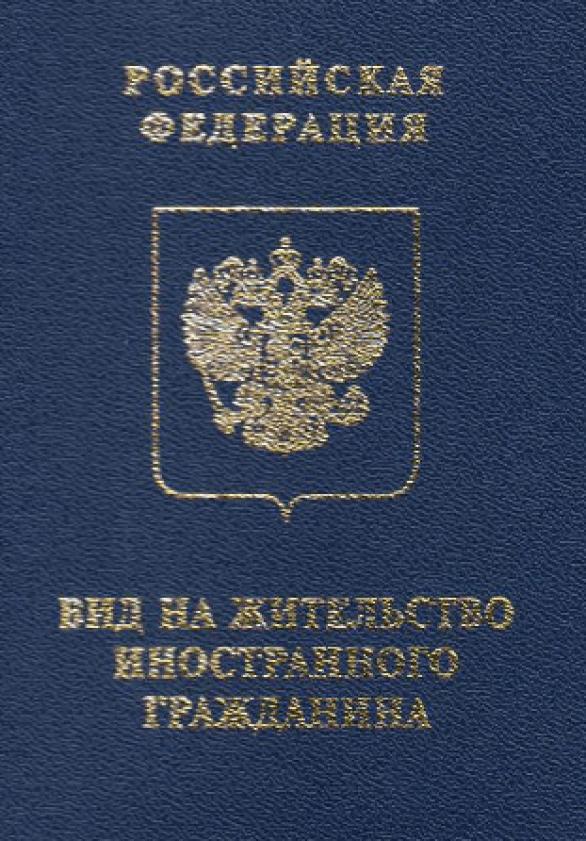 Гражданство РФ после вида на жительство в России и получения РВП: как пройти процедуру, имея на руках ВНЖ?