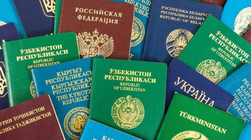 Документы для подачи на рвп участнику программы переселение соотечественников