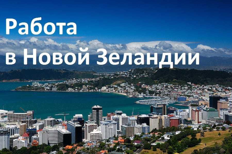 Работа в Новой Зеландии